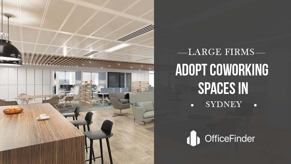 Large Firms Adopt Coworking Spaces In Sydney