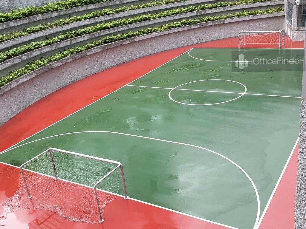 Alexandra Technopark Soccer Court